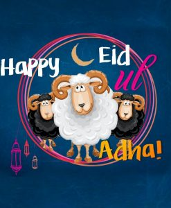 Eid Ul Adha Quirky Sheep - Greeting cards - Hidden Pearls