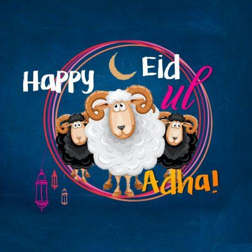 Eid Ul Adha Quirky Sheep - Greeting cards - Hidden Pearls